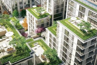 Construcción verde: Conoce todo sobre la arquitectura sustentable